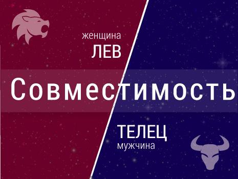 Совместимость: женщина-лев и мужчина-телец