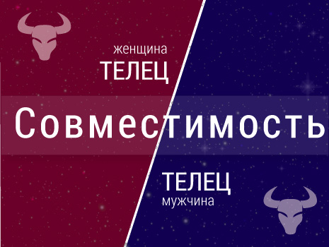 Совместимость: женщина-телец и мужчина-телец