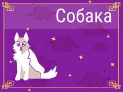 Собака в Китайском гороскопе