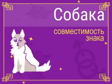 ЗСовместимость знака Собака