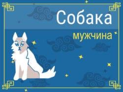 Мужчина Собака: черты характера, карьера, любовь и семья