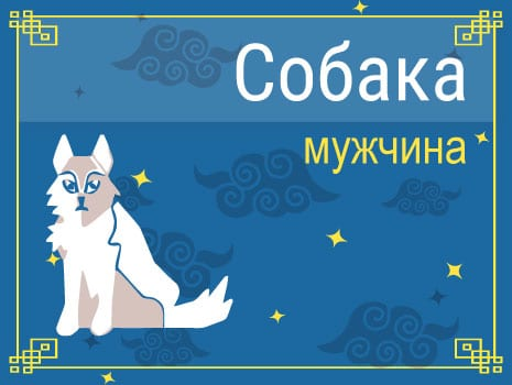 ЗМужчина Собака: черты характера, карьера, любовь и семья