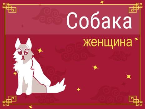 ЗЖенщина Собака: черты характера, карьера, любовь и семья