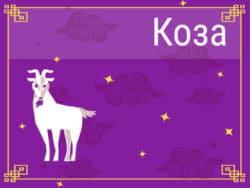 Коза в Китайском гороскопе