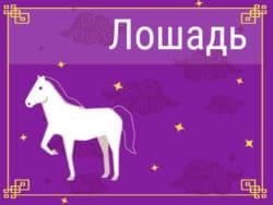 Лошадь в Китайском гороскопе