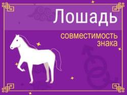 Совместимость знака Лошадь