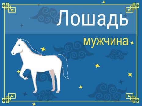 ЗМужчина Лошадь (Конь): черты характера, карьера, любовь и семья