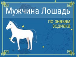 Мужчины Лошади по знакам Зодиака