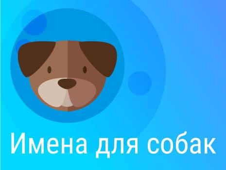 Имена для собак