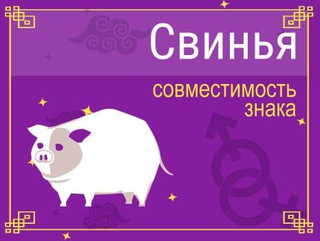 ЗСовместимость знака Свинья (Кабан)