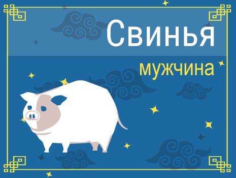 ЗМужчина Свинья: черты характера, карьера, любовь и семья
