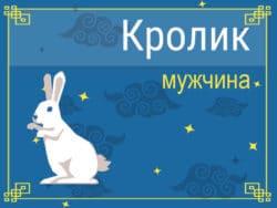 Мужчина Кролик (Кот): черты характера, карьера, любовь и семья