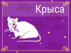 Крыса в Китайском гороскопе