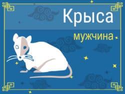 Мужчина Крыса: черты характера, карьера, любовь и семья
