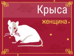 Женщина Крыса: черты характера, карьера, любовь и семья