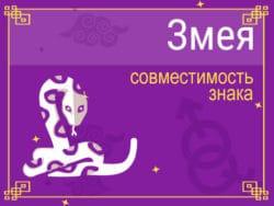 Совместимость знака Змея