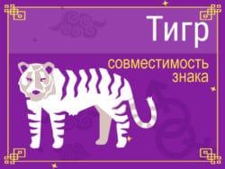 Совместимость знака Тигр