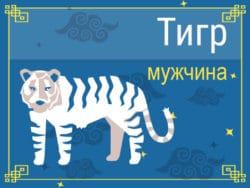 Мужчина Тигр: черты характера, карьера, любовь и семья