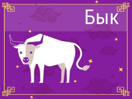 ЗБык в Китайском гороскопе