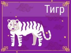 Тигр в Китайском гороскопе